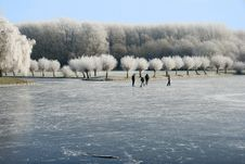 Free Winter Landscape Stock Photography - 7856042