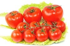 Free Few Tomatos Stock Photography - 7856052