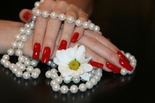 Free Pearl Necklace Stock Photo - 7858240
