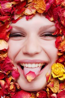 Free Female Face With Roses Stock Photos - 7858583