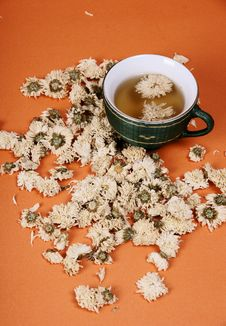 Free Chrysanthemum Tea Stock Photo - 7859550