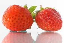 Free Two Strawberries Isolated On White Royalty Free Stock Photos - 7860888