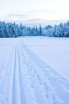 Free Ski Tracks Royalty Free Stock Photos - 7861188
