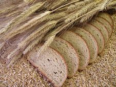 Free Bread Royalty Free Stock Photography - 7861217