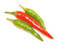 Green And Red Chillies Stock Photography