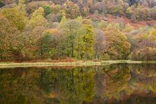 Free Autumn Colours Stock Photography - 7862912