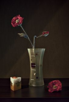 Free Red Flower Still Life Stock Images - 7864264