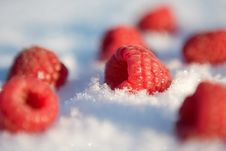 Free Raspberries In The Snow Royalty Free Stock Photography - 7866297