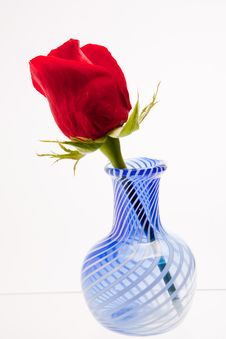 Free Blue Vase And A Rose Stock Photo - 7866800