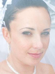 Bride Under The Bridal Veil Royalty Free Stock Photo
