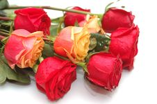 Free Bouquet Of Red And Yellow Roses Stock Image - 7868391
