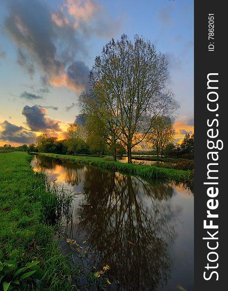 Reflections Near Delftse Hout