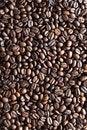Free Coffee Bean Texture Stock Photo - 7870130