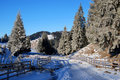 Free Winter Road In Mountains Royalty Free Stock Image - 7879216