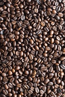 Free Coffee Bean Texture Stock Photo - 7870130