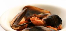 Free Mussels Royalty Free Stock Photos - 7870858