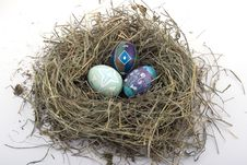 Free Colored Easter Eggs In The Nest Royalty Free Stock Image - 7873926
