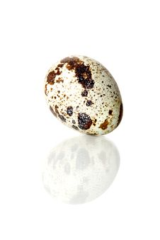 Free Quail Egg Stock Photography - 7874722