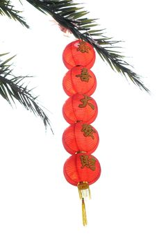 Free The Lanterns Hung On The Tree Royalty Free Stock Photography - 7875437