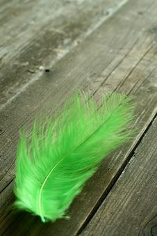 Free Green Feather On Old Wooden Stock Image - 7875441