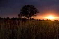 Free Sunset Royalty Free Stock Image - 7876326