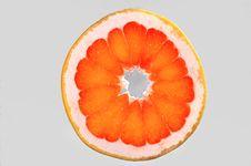Free Grapefruit Stock Photography - 7876652