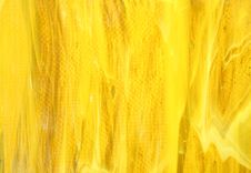 Free Yellow Glass As A Background Stock Images - 7877474
