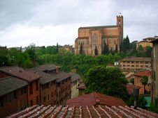 Free Siena View Royalty Free Stock Photos - 7879068
