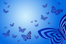 Free Butterflies Royalty Free Stock Photography - 7879687