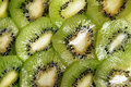 Free Slices Of Kiwifruit Stock Images - 7880644