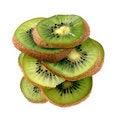 Free Slices Of Kiwifruit Stock Photo - 7880810