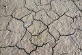 Free Parched Crannied Earth Royalty Free Stock Image - 7881506