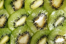 Free Slices Of Kiwifruit Stock Images - 7880644