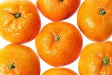 Free Mandarins Stock Photos - 7880713