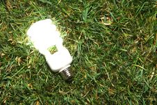 Free Green Light Bulb Royalty Free Stock Photography - 7881267