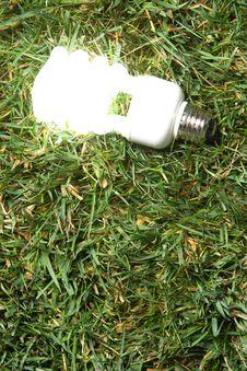Free Green Light Bulb Stock Images - 7881324