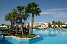Free Palm Tree In Pool Stock Photography - 7881362