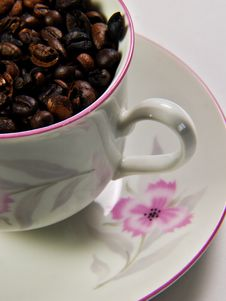 Free Coffee Cup Royalty Free Stock Photo - 7881485