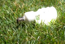 Free Green Light Bulb Royalty Free Stock Image - 7881496