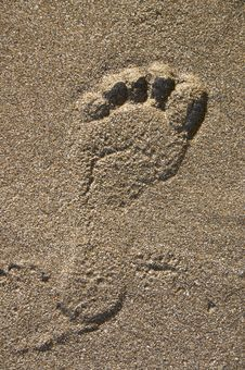 Free Footprint On Sand Royalty Free Stock Images - 7881529