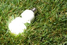 Free Green Light Bulb Stock Photography - 7881702