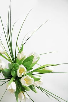Free Decoration With White Tulips Royalty Free Stock Images - 7882259
