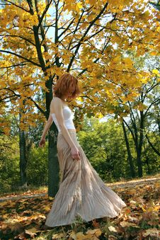 Free Young Woman In An Autumn Park Royalty Free Stock Image - 7883246