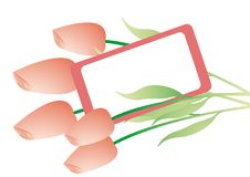 Free Bouquet With Pink Tulips Stock Photos - 7885863