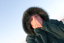 Free The Cold Stock Image - 7886441
