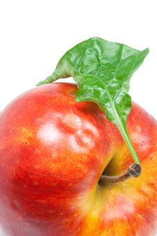 Free Apple With A Sheet Royalty Free Stock Photos - 7886938