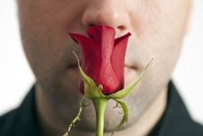 Part Of Man S Face With Red Rose In Front Royalty Free Stock Image