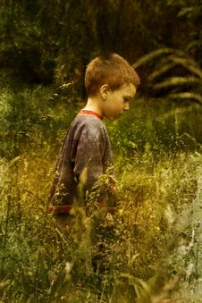 Free Young Child In Nature Stock Photo - 7889210
