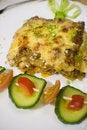 Free Lasagna Stock Photos - 7893943