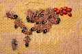 Free Ladybirds And Red Bugs Royalty Free Stock Photo - 7898375